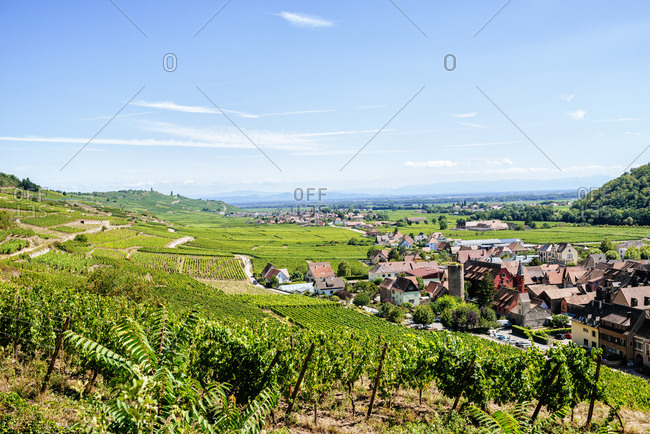 Village of Kaysersberg surrounded by its famous vineyards in Alsace, France