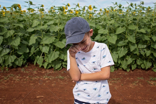 Boy standing in a field with sunflowers