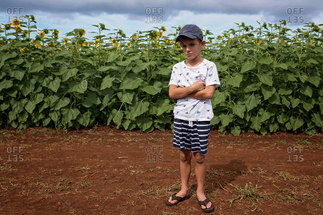 Boy standing with arms crossed in a field with sunflowers