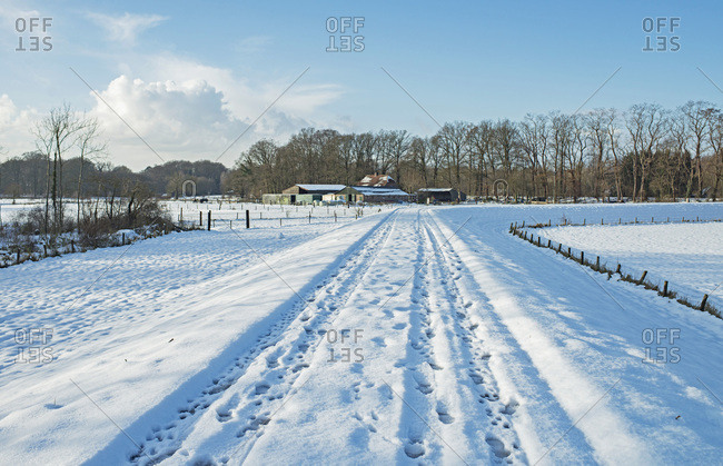 Tire tracks in snow on dyke in countryside