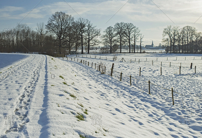 Dutch rural landscape with trees and fences covered in snow