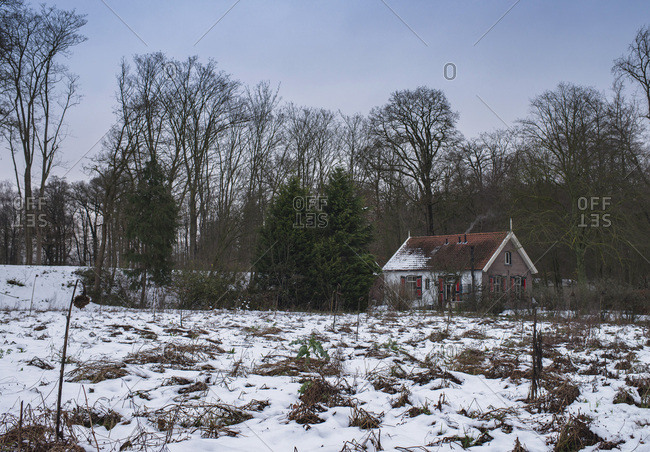 Small house surrounded by trees in winter snowy rural landscape