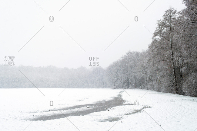 Meadow with frozen puddles covered in snow during snowfall
