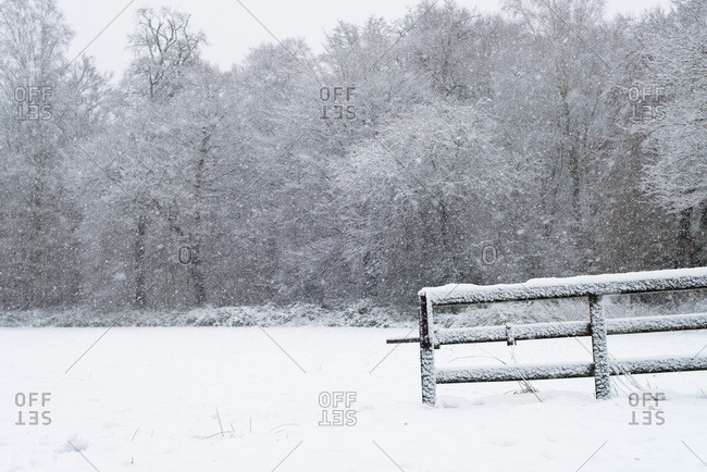 Wooden fence in meadow with trees covered in snow during snowfall