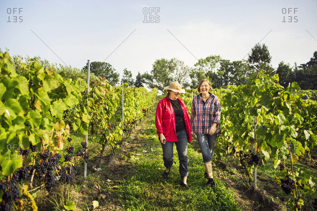 Mother with daughter walking in vineyard