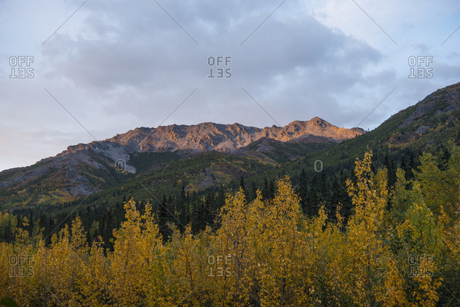 Scenic view of landscape at Denali National Park and Preserve against sky