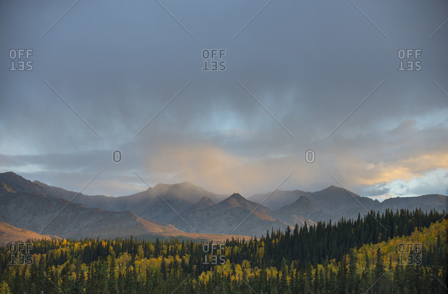 Scenic view of trees by mountains at Denali National Park and Preserve against sky