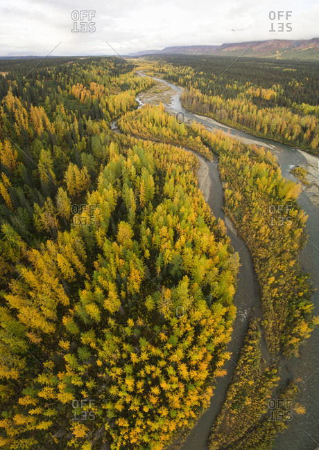 High angle view of river trees Denali National Park and Preserve against sky