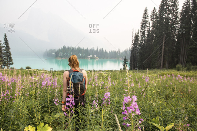 Rear view of woman with backpack walking amidst plants at Yoho National Park