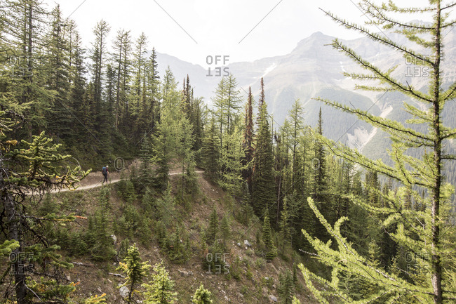 Mid distance view of woman walking on road at Banff National Park against sky