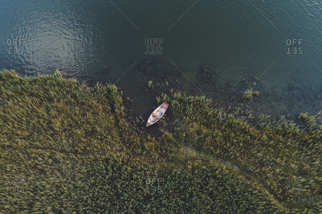 High angle view of boat moored at lakeshore in forest