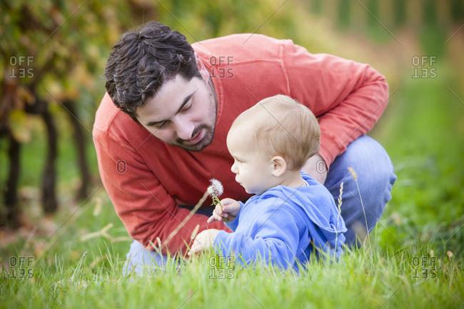 Father with son sitting in the grass, Osijek, Croatia