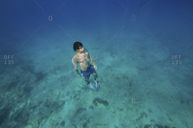 Diver with flippers, Adriatic Sea, Dalmatia, Croatia