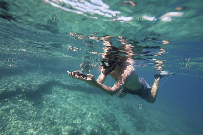 Snorkeler underwater, Adriatic Sea, Dalmatia, Croatia