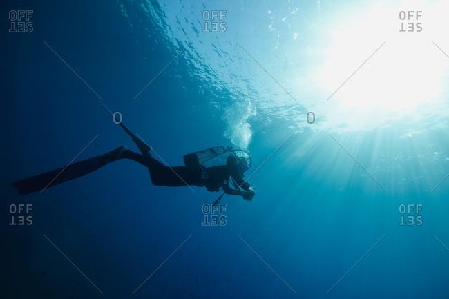 Diving, Sunlight, Adriatic Sea, Croatia, Europe
