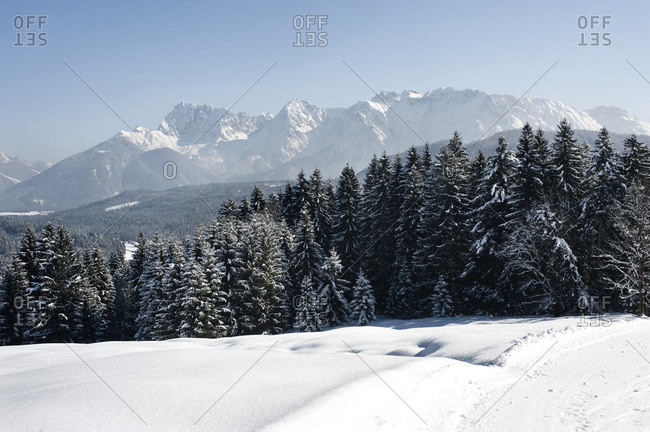 Snow covered forest against mountain range, Garmisch, Bavaria, Germany