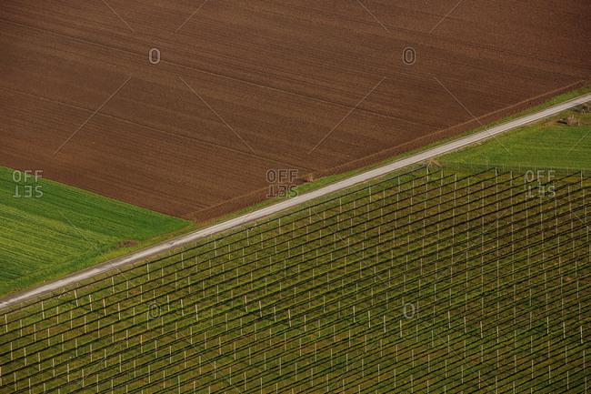 Aerial View, fields, Baranja, Croatia