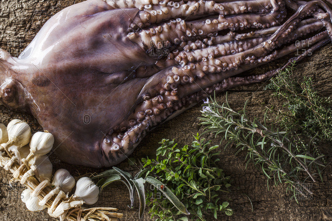 Preparing Octopus Salad
