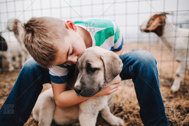 A boy petting a puppy