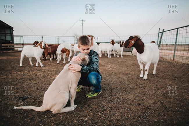 A boy petting a puppy