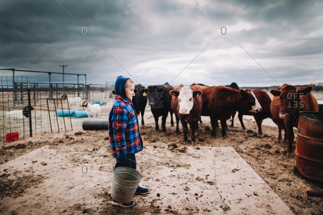 A boy holding a bucket of feed for cows