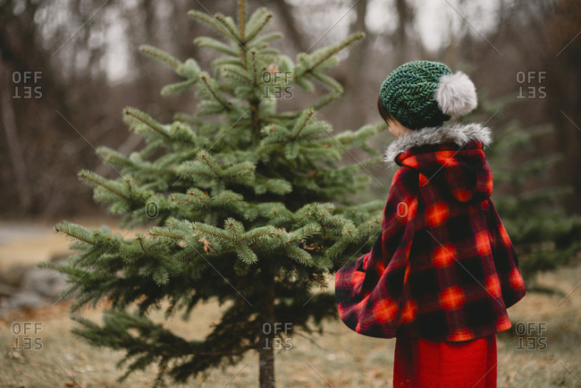 Young girl outside dressed for the holidays looking at a pine tree
