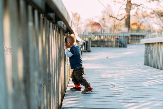 Little boy looking through wooden railing