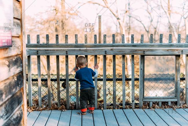 Toddler boy looking through wooden railing