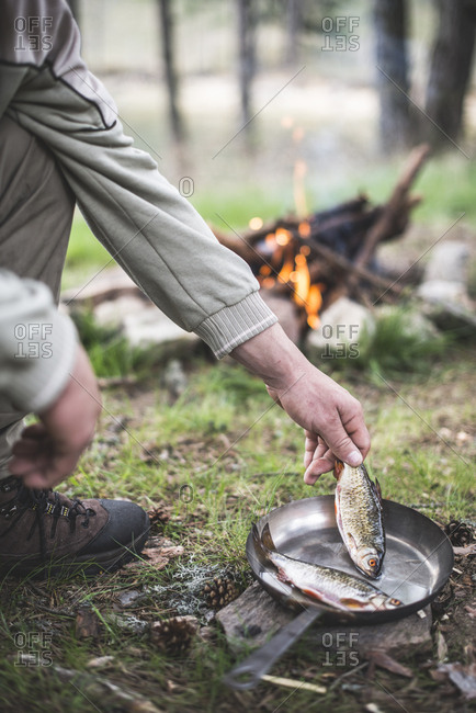 Man's hand putting rudd into a pan for frying at camp fire