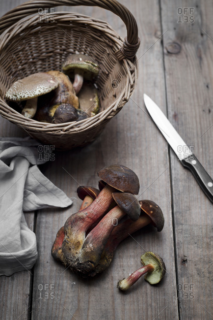 Bay boletus  and portobello mushroom in wicker basket
