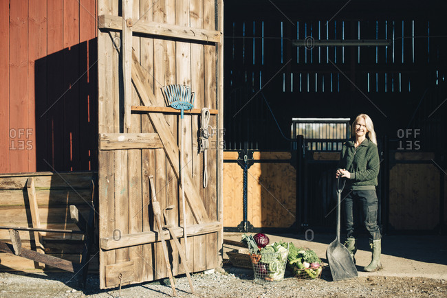 Full length portrait of mature farmer with shovel standing by organic vegetables outside barn