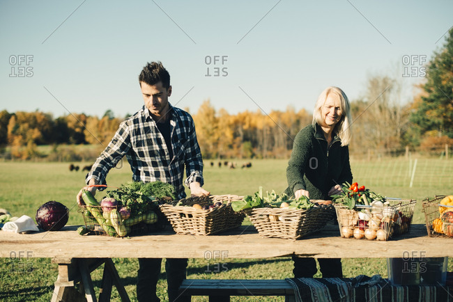 Male and female farmers arranging organic vegetables for sale on table