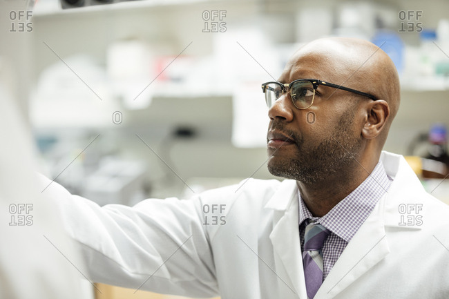 Mature male medical researcher working in laboratory at hospital
