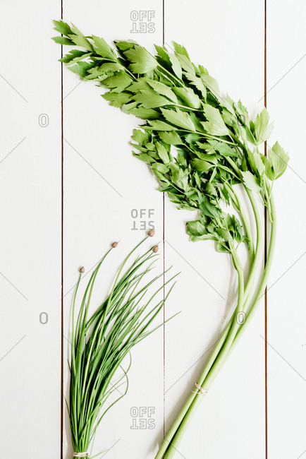 Fresh bunches of parsley and chives