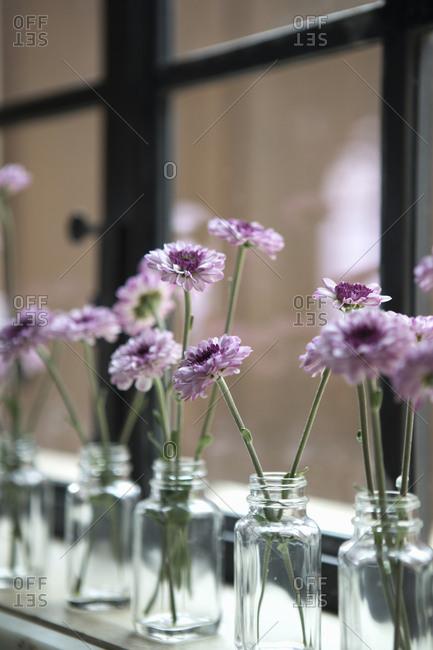 Simple floral jar arrangements on windowsill