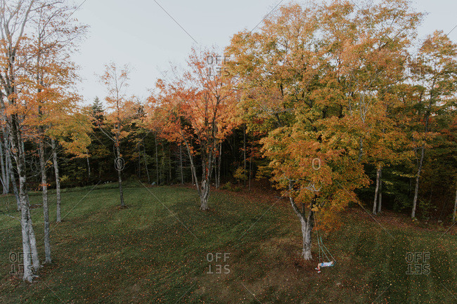 Fall drone image of a girl in a swing