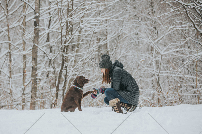 Woman and chocolate lab in a snowy scene in winter