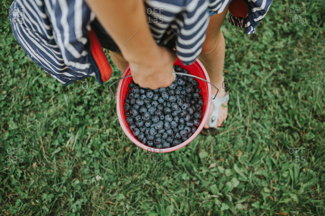 Overhead view of girl holding a bucket of blueberries