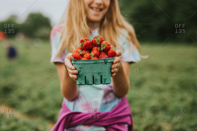 Girl holding a pint of freshly picked strawberries