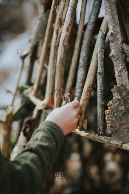 Hand of a girl building a teepee in the woods