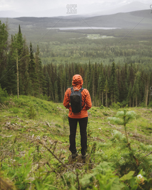 Young woman stares out over clear cut block with backpack on.