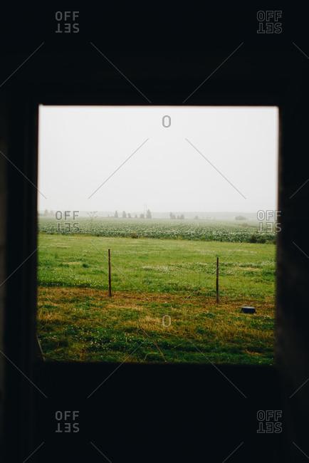 View of foggy farmland through window