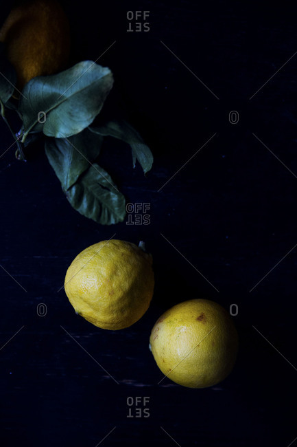 Two ripe bergamot oranges ready for production