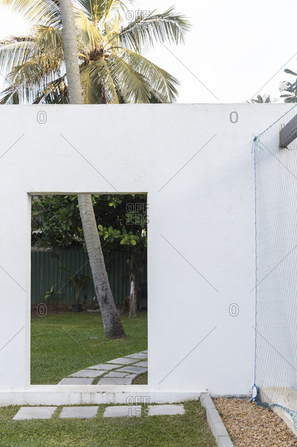 A palm tree shot through a door frame in the garden of a hotel in Negombo, Sri Lanka