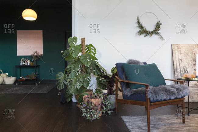 Antwerp, Belgium - January 16, 2018: Plants by a chair in a modern designed and decorated apartment in Antwerp