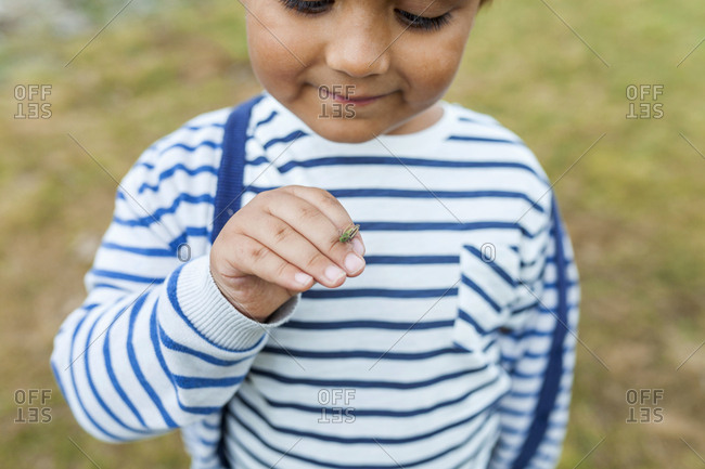 Little boy making friends with tiny cricket on hand