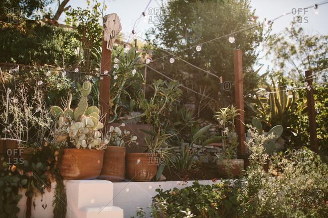 Contemporary southwest backyard garden