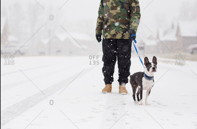 Man with dog in the snow