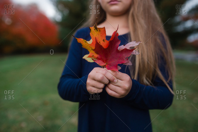 Girl holding colorful leaves