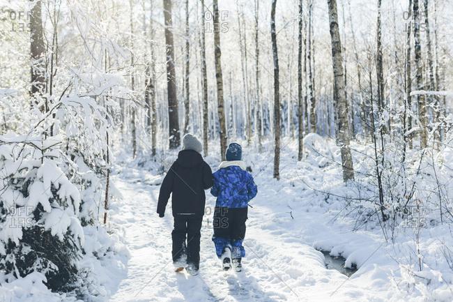 Boys walking in forest during winter in Blekinge, Sweden